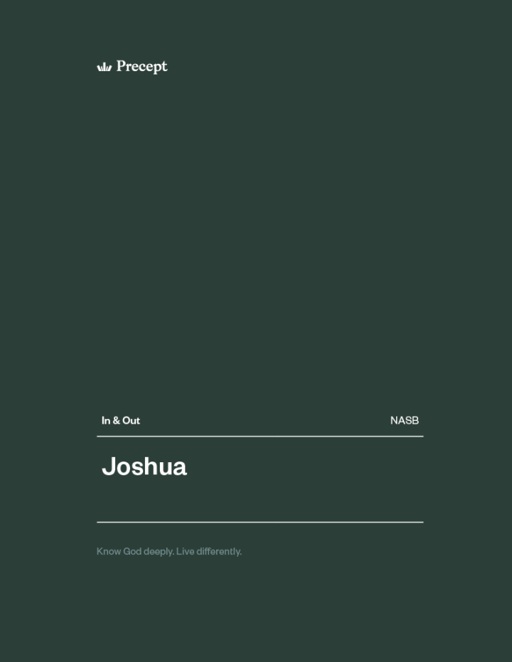 Joshua In & Out