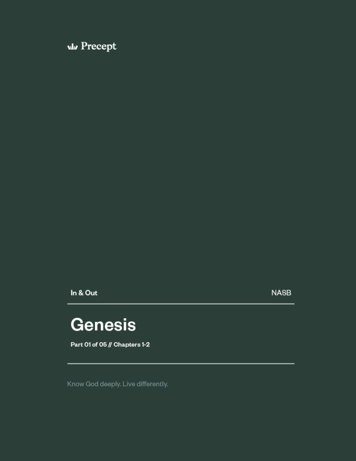 Genesis (Part 1) In & Out